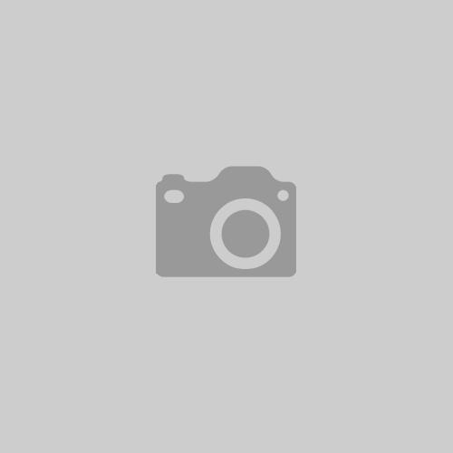 Das Streichquartett – Eine Erklärung